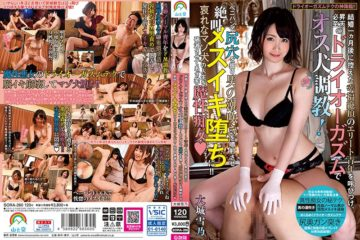 JAV HD SORA-260 Calling In An Elite Youth Who Culminates In Happiness One Month After Getting Married, And Trains A Male Dog With A Dry Orgasm Inevitable Ascension!