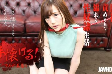 JAV HD Tame Ami: Will be Your Dog – Mika Sumire