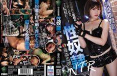 JAV HD RBD-995 Special Investigator Sex Slave ~ NTR Riho Fujimori