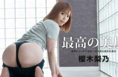 JAV HD The Best Ass Rino Sakuragi